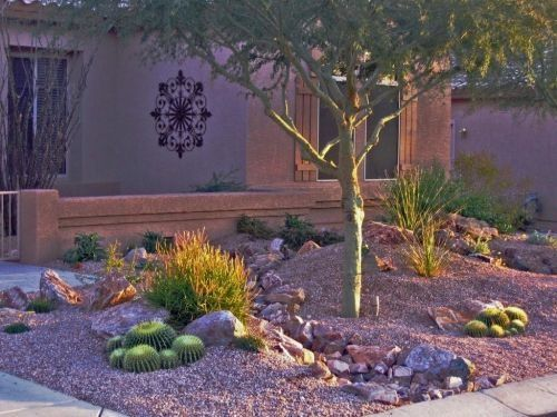 Pin by joyce pihl on az landscape pinterest - Front yard desert landscaping ...