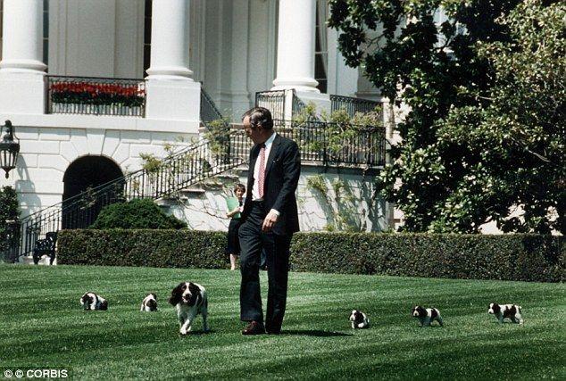 George W. Bush Dog