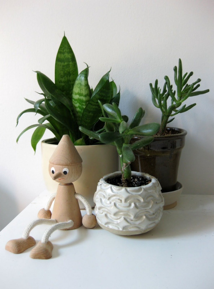 Small house plants furniture i need in my life pinterest