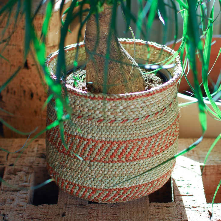 Woven Basket Pinterest : Woven baskets for your plants
