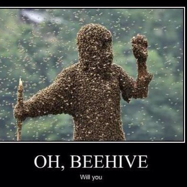 Hate bees too funny stuff Pinterest