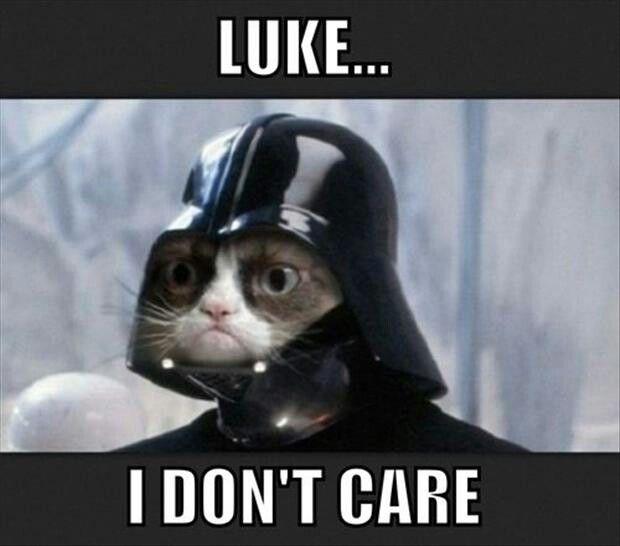 star wars grumpy cat -#main
