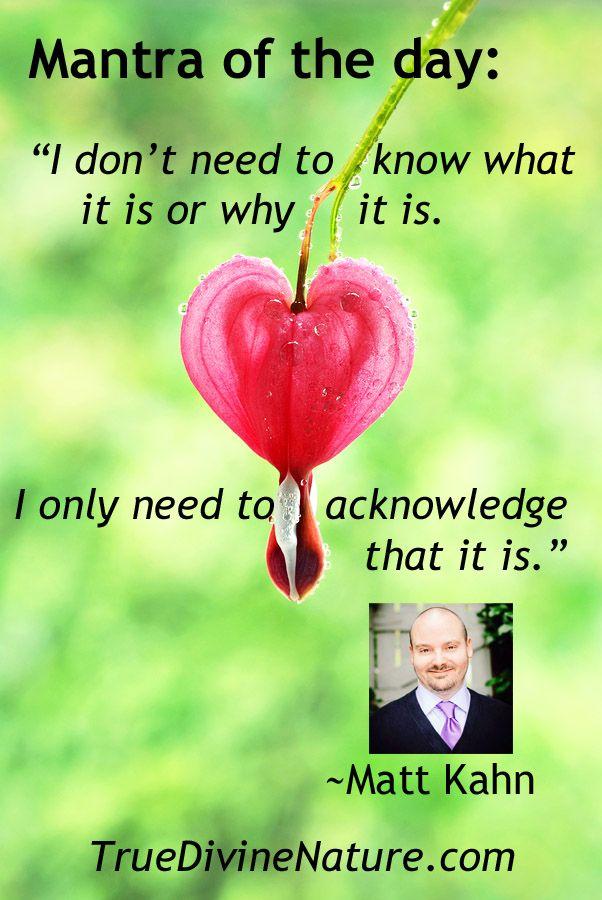 Matt Kahn Quotes Cool Matt Kahn Love Quotes Managementdynamics