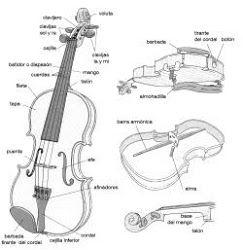 Partes del violin
