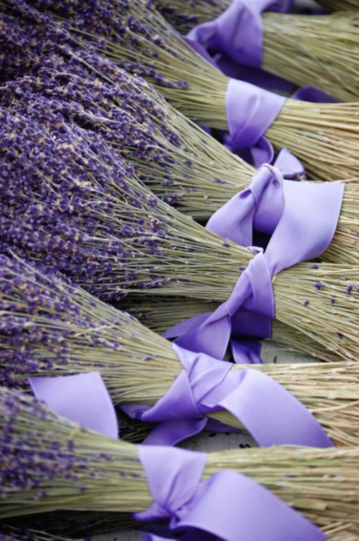 A great way to use fresh Lavender #Lavenderfog #Colourinspires #Patang