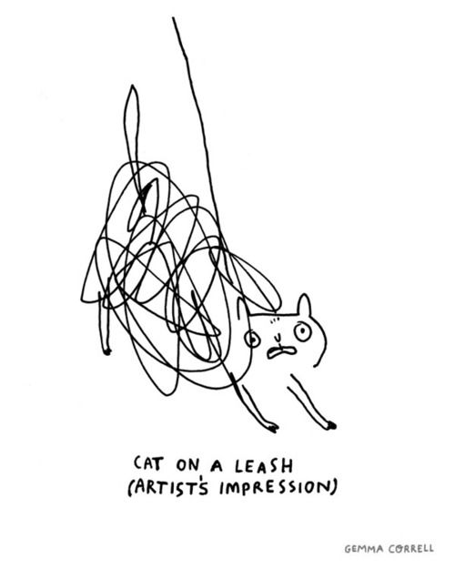 Cat on a Leash. By Gemma Correll