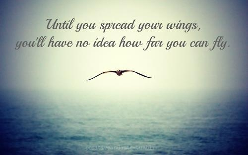 Spread your wings and fly quotes quotesgram
