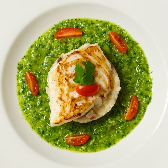 Seared fish with green gazpacho sauce my kind of food for Sauces for fish