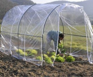 Greenhouse do it yourself