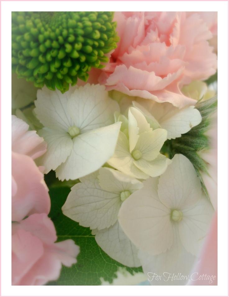 Win Free Flowers
