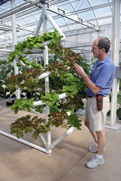 Hydroponic spiral gardening technique-nutrient water flows in at top, down throughout the spirals and is collected at the bottom to be reused