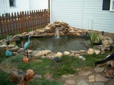 small backyard ponds small backyard ponds give you pride enjoyment