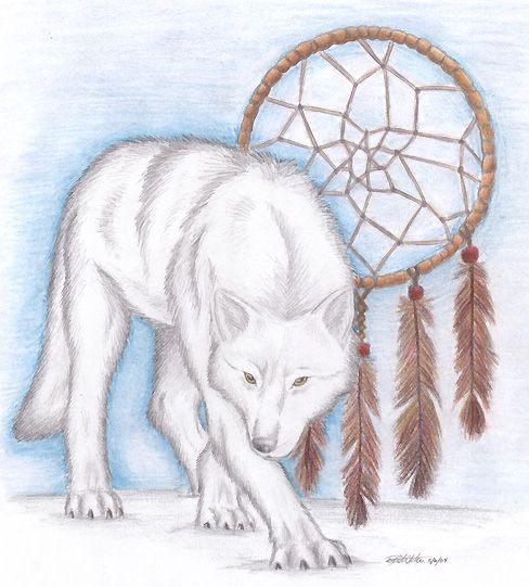 Wolf Dream Catchers Drawings Wolf and a dream catch...