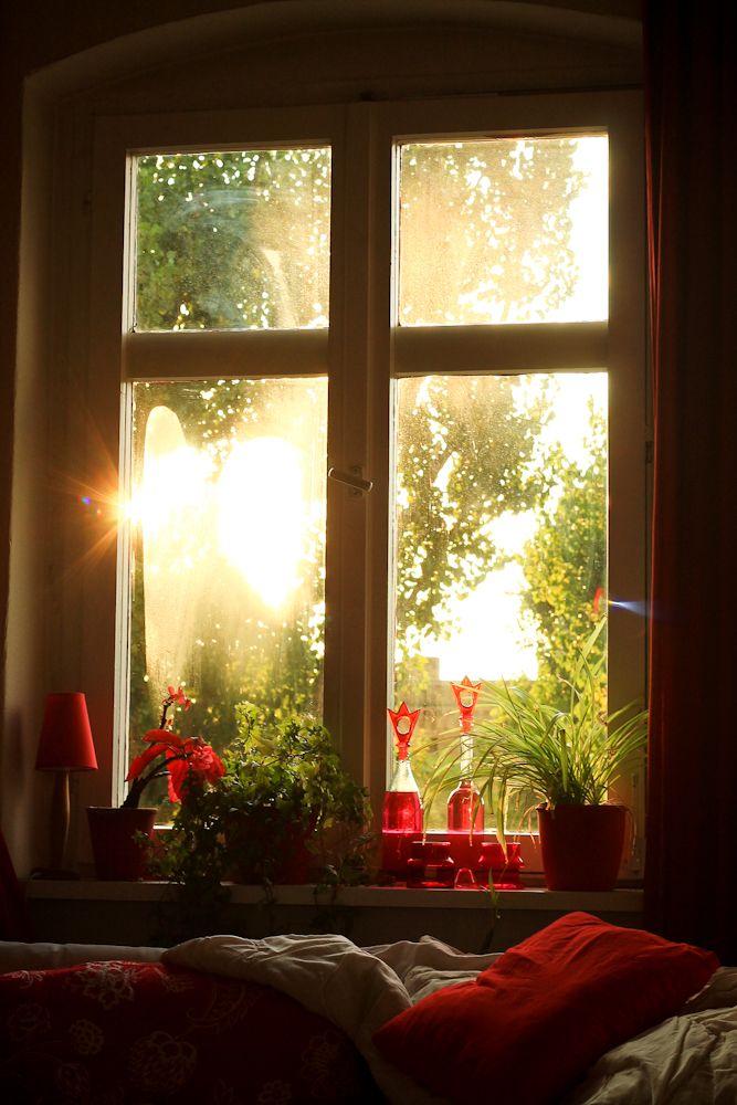 What a glorious morning random pics pinterest for Sunlight windows