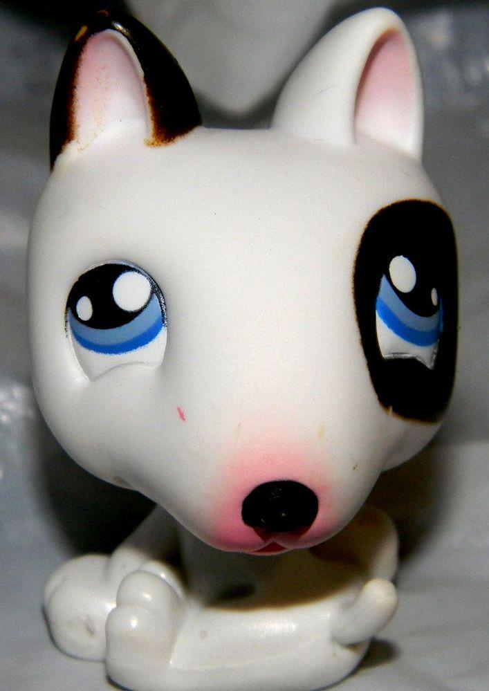 lps brown dog littlest - photo #21