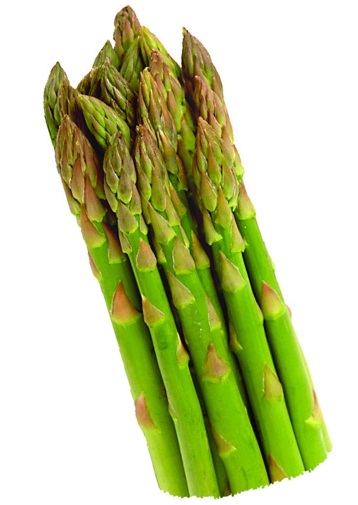 Asparagus, Pecorino and Red Onion Salad | Recipe