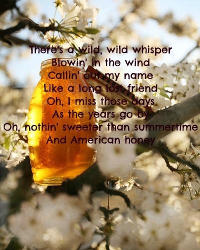 american honey by lady antebellum free download