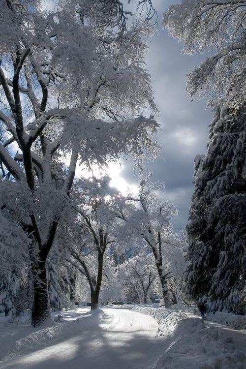 Beautiful Snow Winter Scenes Pinterest