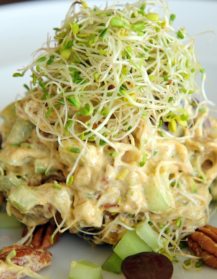 Coronation Chicken Salad | Chicken Salad Galore! | Pinterest