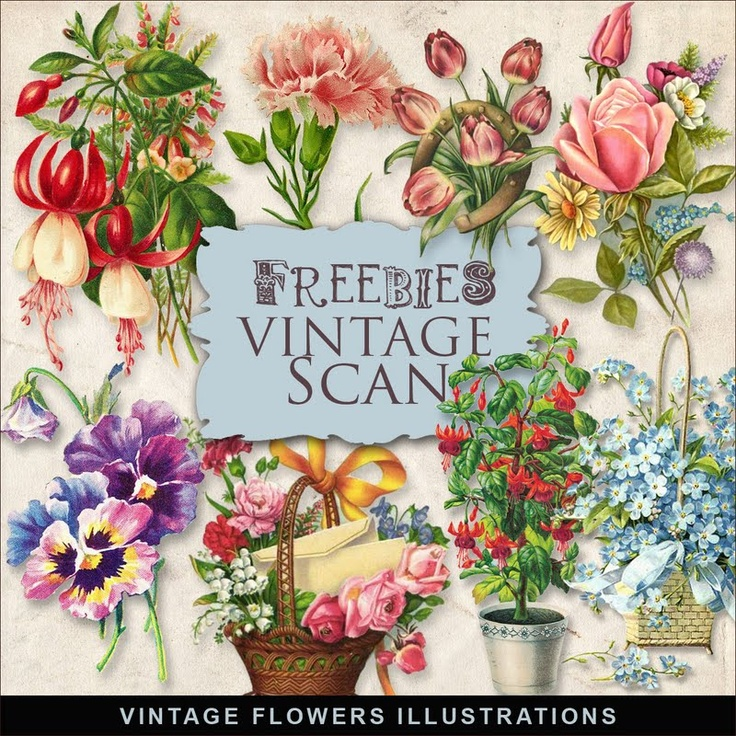 21 different vintage illustrations kits to download for free
