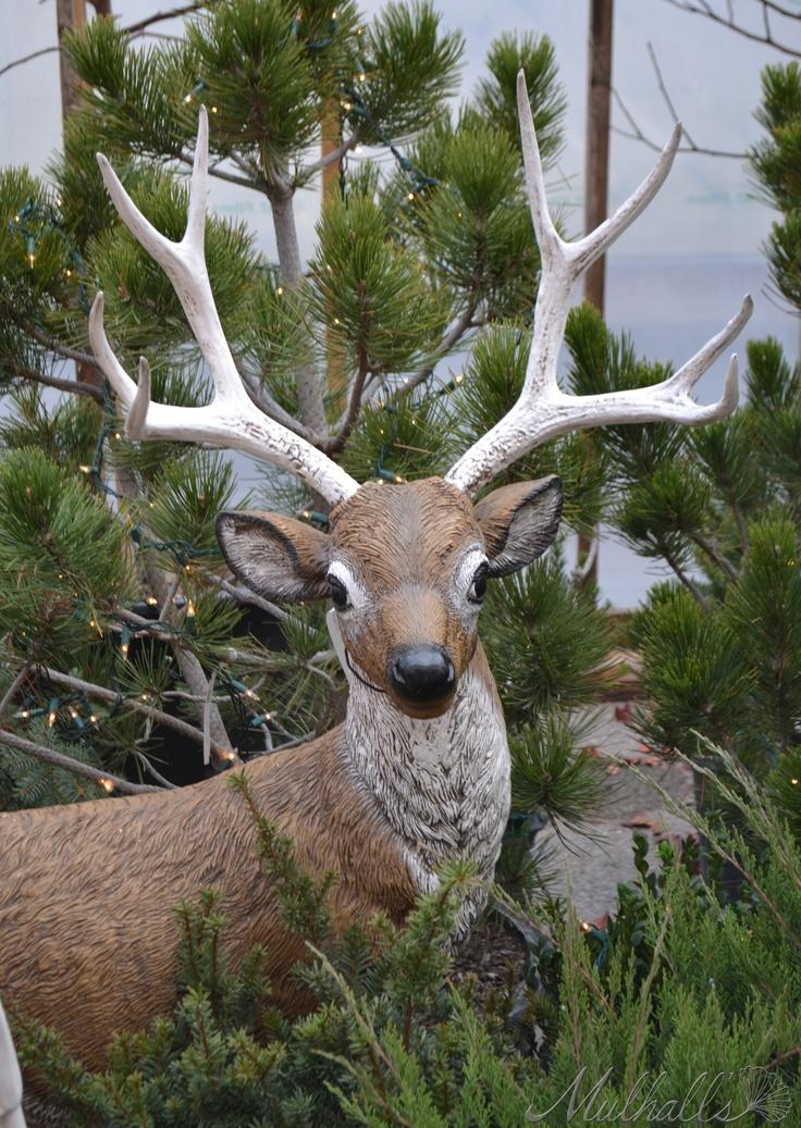 Image Result For Deer Garden Statues Resin