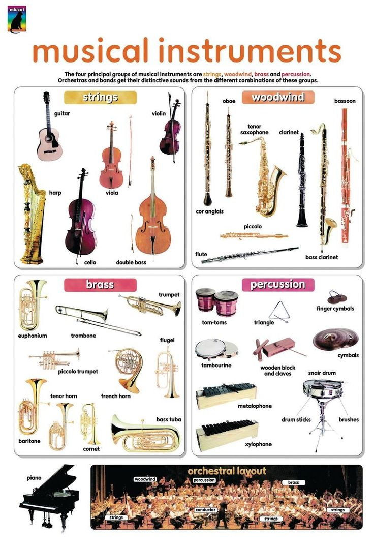 kinds of musical instruments essay Better essays: musical instruments - musical instruments a fairly old instrument that is still in use today is the theremin it has a particular design that is.