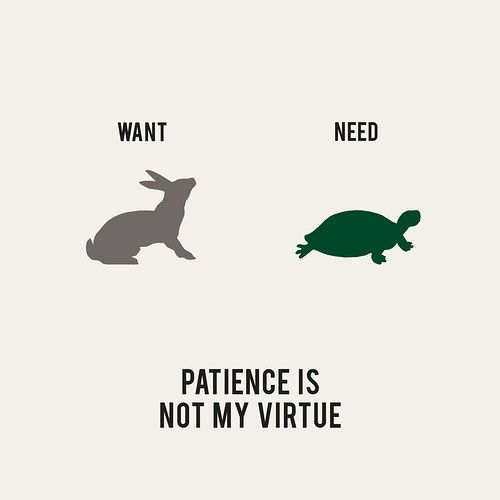 patience is a virtue 3 essay Having patience in nursing essay essay on career interest business paper patient centered care nursing essay free essay online college students why do i want to be a nurse practitionerhome care nursing articles why nursing as a career essay cultural assessment nursing essay what is  difference in the lives of your patients and nurses because of cultural diversity have to face the.