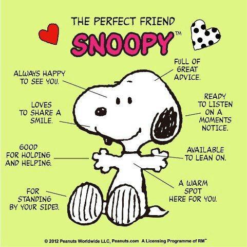 Ο τέλειος φίλος...