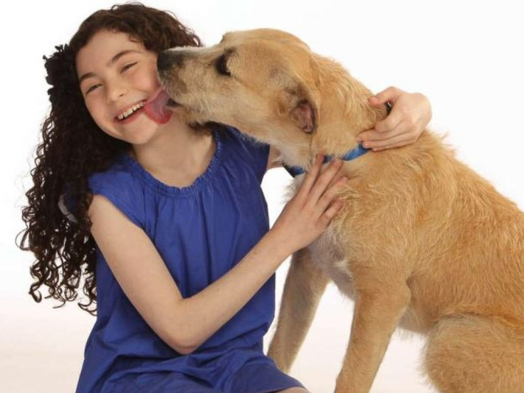 BARC on Broadway: Houston dog rescued from death is set to star in big-time Annie revival
