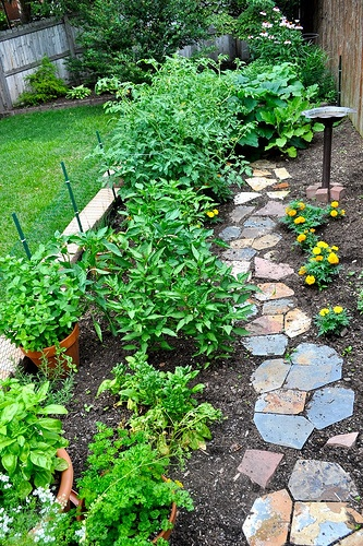 Vegetable garden already have a similar footprint at the back of the