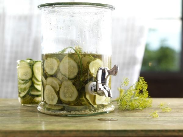 Homemade Kosher Dill Pickles | Culinaria | Pinterest