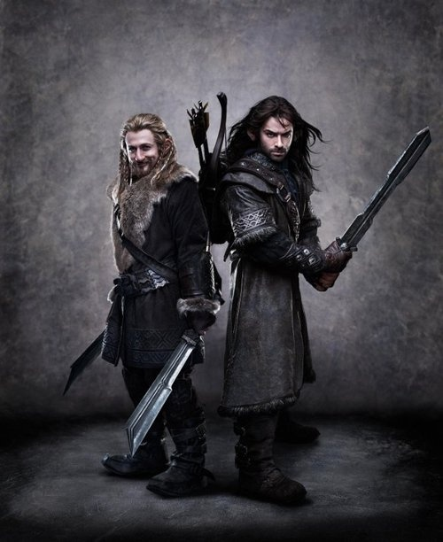The-Hobbit-the-hobbit-an-unexpected-journey-27830022-500-612.jpg (500