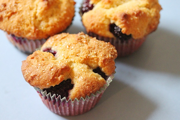 Lemon blackberry ricotta muffins. ABSOLUTELY DIVINE.