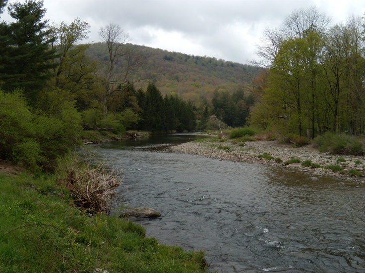 Pin by nys dec campgrounds day use areas on catskills for Roscoe ny fishing