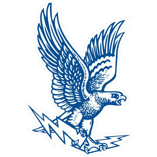 air force falcons falcon logo falcon grp intl pinterest
