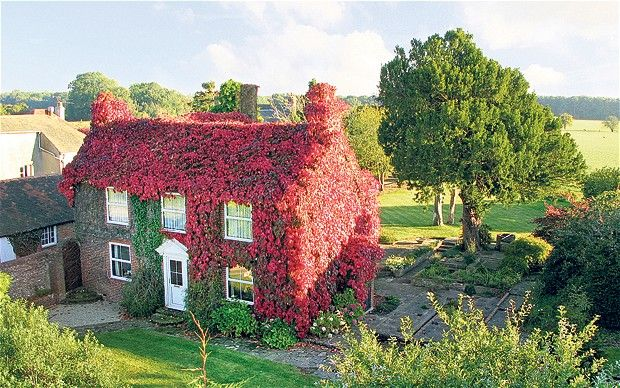 Top 10 houses covered in ivy wisteria and greenery for Best house photos