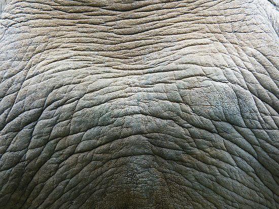 Rhino Skin | Skin | Pinterest