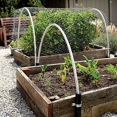 Raised beds by acerg c 1 gardening plant it up pinterest Raised garden bed covers