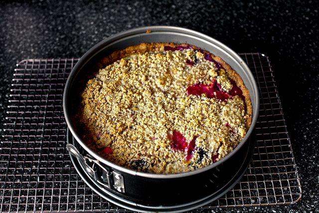 Hazelnut Plum Crumb Tart cooling by smitten, via Flickr
