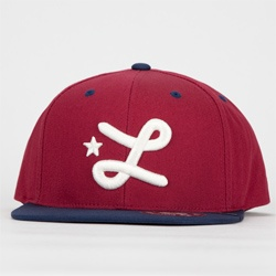 Lrg Core Collection Mens Snapback Hat