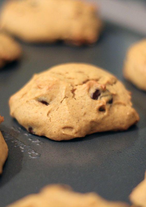 Dark Chocolate Pumpkin Cookies Recipes — Dishmaps