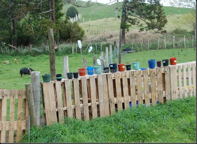 Pallet fence with pots nailed to the top | Pallet Upcycling Ideas | P ...