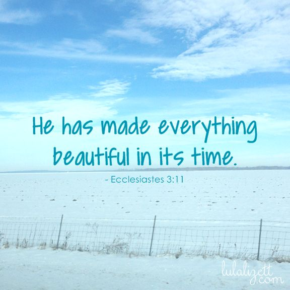 ecclesiastes bible quote about beauty wise words