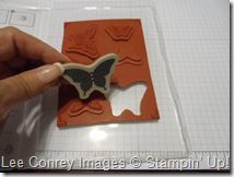 Stampin' Up!  Clear Mount Tutorial  Lee Conrey