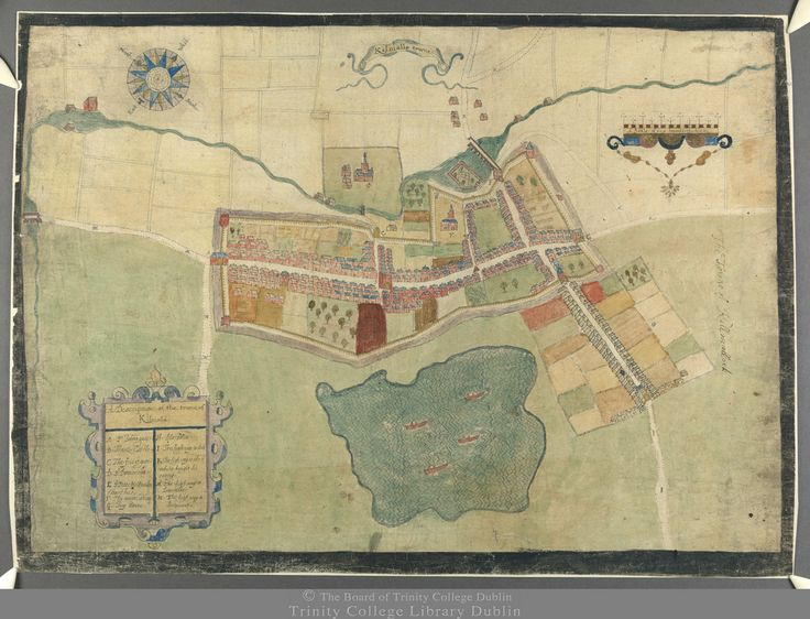 1655 in Ireland