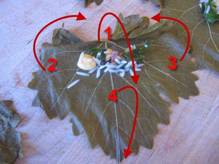 Vegetarian Stuffed Grape Leaves Recipe – Warak Enab | Mama's ...