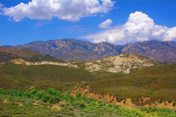 Took a back road from Bakersfield, CA to Ventura, CA via Ojai. This is Chumash Indian, Condor country...the Los Padres National Forest. Wild and wonderful.