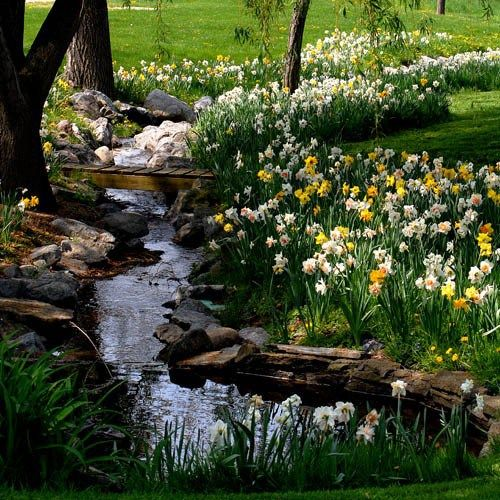 Canadian landscaping ideas for backyard