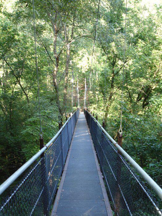 Lullwater park atlanta pinterest for Lull water
