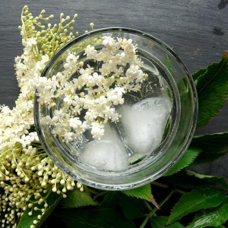 Elderflower Cordial REcipe | Spa and health | Pinterest
